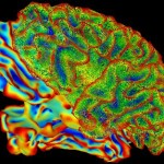 brainscan-rainbow-colors-creativity-thinking-publichdomain
